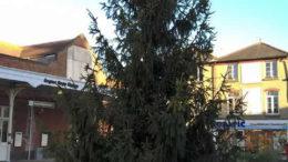 Wonky Xmas Tree Bognor