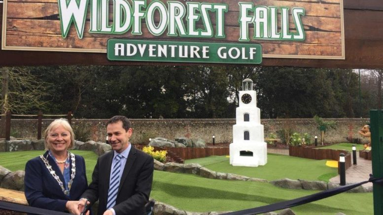 Wildforest Falls