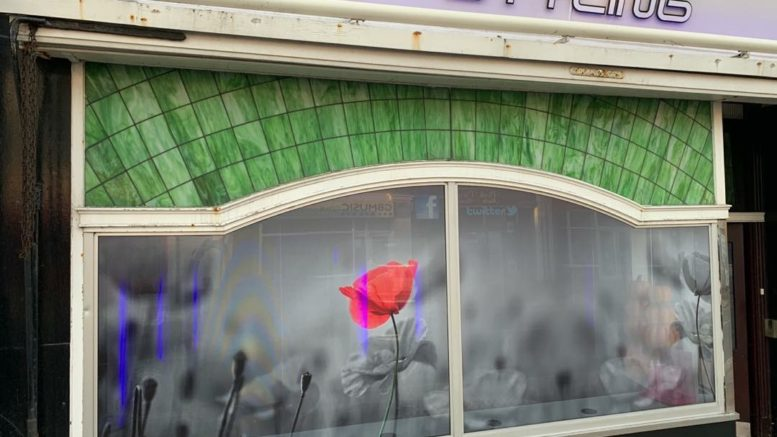 poppy window
